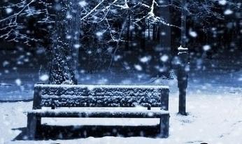 2017-Dec-Show-IAWL-Bench 3
