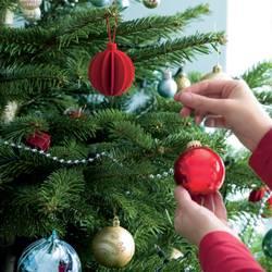 Trim A Christmas Tree - creditrestore.us